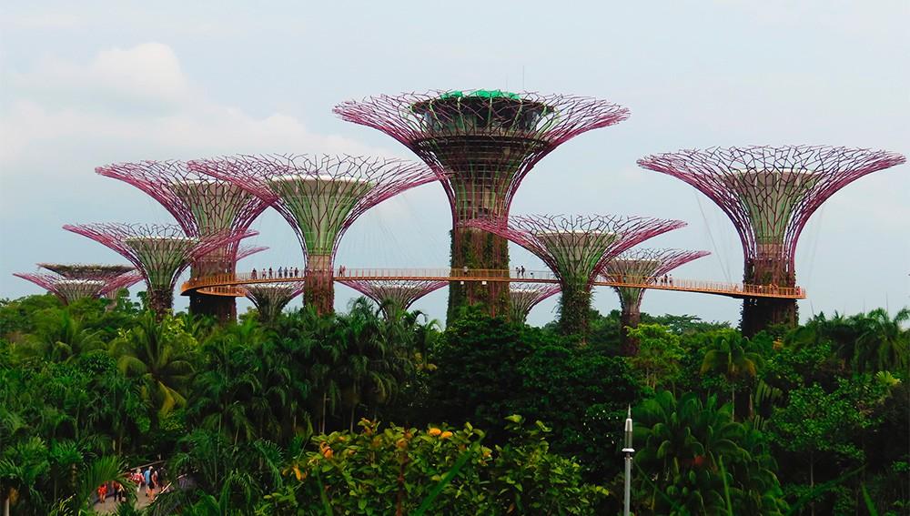 Foto de Singapur